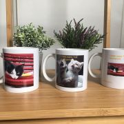 3 mugs à collectionner !